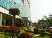 漳州市芗城中医院