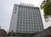 湖北省大冶市中医医院