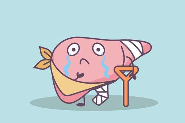 脂肪肝不能吃肉?教你靠谱的护肝指南